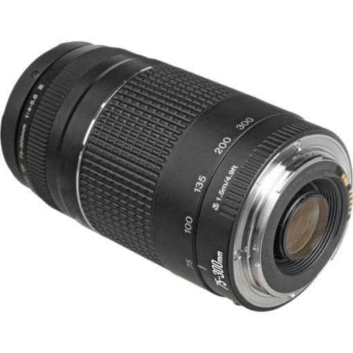 Canon Zoom Telephoto EF 75-300mm f/4.0-5.6 III Autofocus Lens