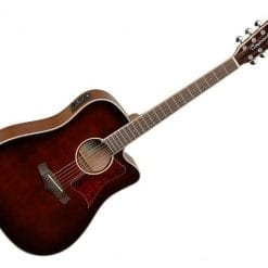 Tanglewood Winterleaf Acoustic Guitar - Whiskey Barrel Gloss/Rosewood- TW5DCEWB
