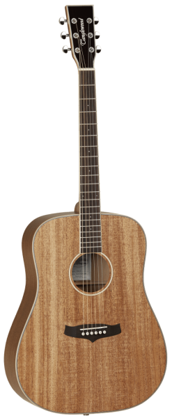 Tanglewood TWUD Dreadnought Body Style Acoustic Guitar
