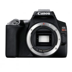 Canon EOS Rebel SL3 Digital SLR Camera Body (Black)
