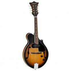 Tanglewood 5-String Banjo Natural Gloss Finish TWB18M5