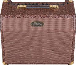 Luna Guitars Acoustic Ambiance 25 Watt Amplifier (AA 25)
